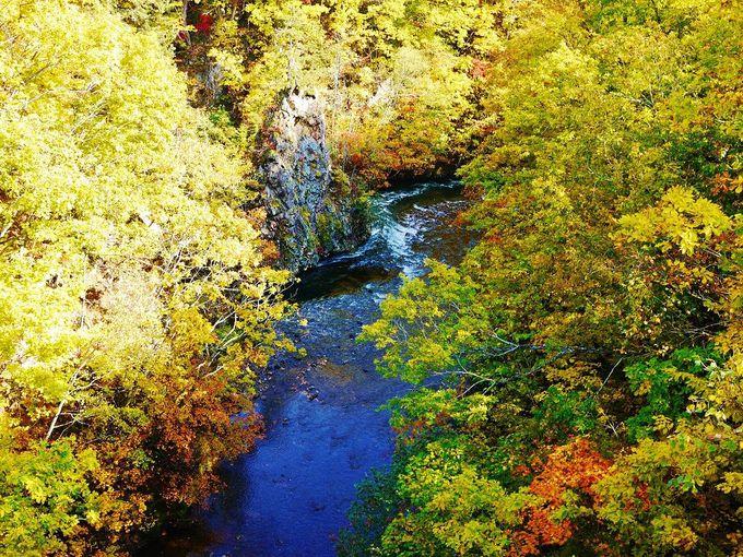 橋のあるところには紅葉の絶景がある!「定山渓温泉」