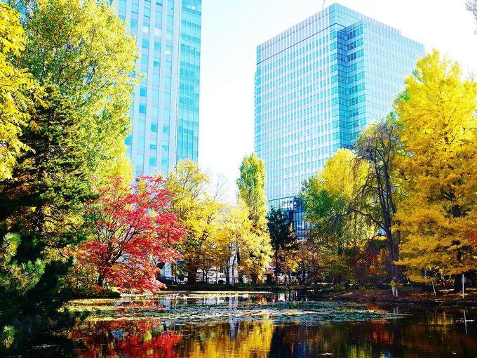 北海道庁旧本庁舎(赤れんが庁舎)の庭園からビル街と紅葉を眺める
