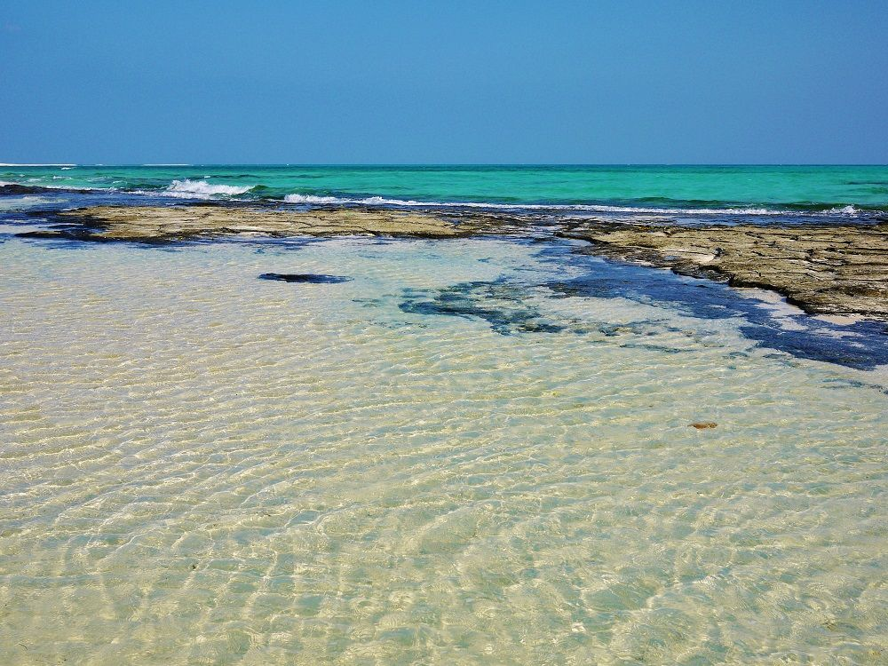 神秘的な風景に溶け込む波紋もまた美しい