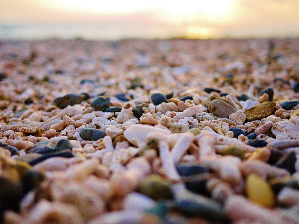 夕日が傾くまでの間はビーチコーミングを楽しもう!