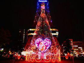 年末年始旅行や冬休みに!北海道のおすすめ観光スポット6選