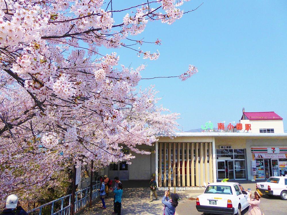 駅舎と桜の絵になる風景!