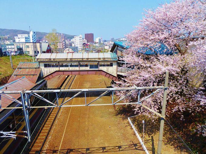 跨線橋から眺める春のJR南小樽駅ホーム