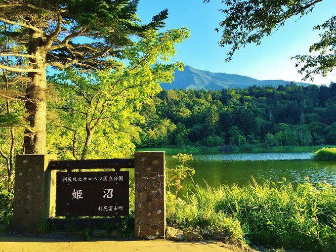 利尻山山麓にたたずむ神秘の小沼「姫沼」へ行こう!