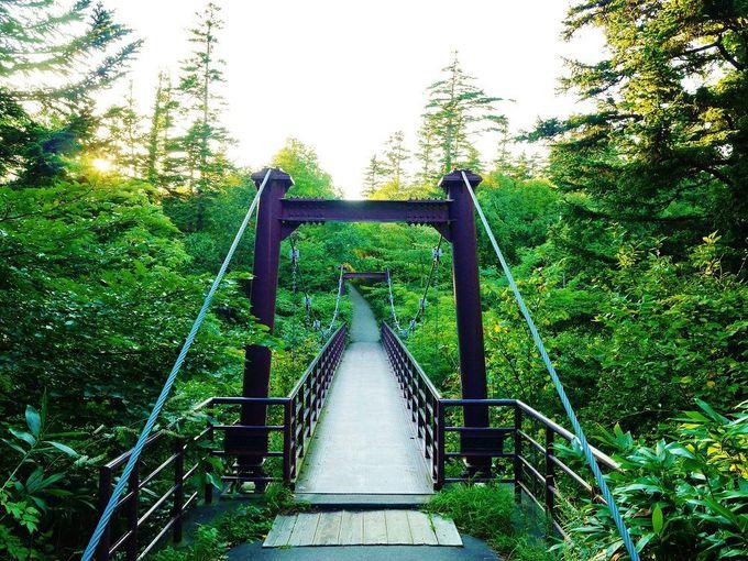 思い出橋を渡って姫沼湖畔へ