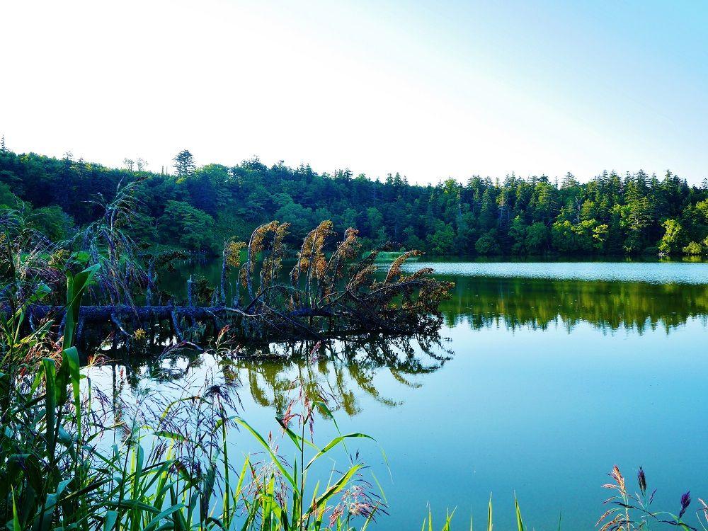 「姫沼」は人造湖の事実!