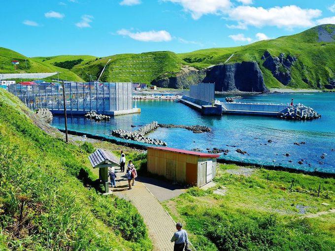 海の青さと島の美しさが感じられる展望台まで続く坂道