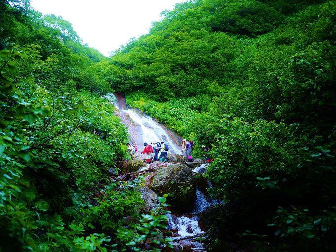 斜里岳登山は清里町からのコースがオススメ