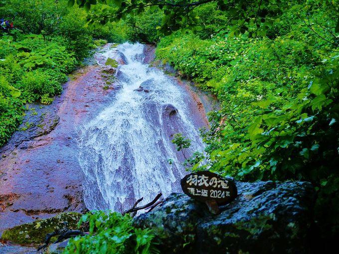 数々の滝を眺めながら沢を登ろう!