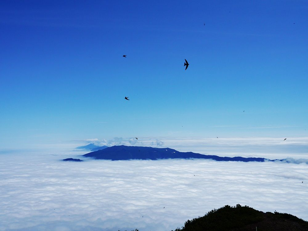 斜里岳山頂からは運が良ければ絶景+雲海の展望!