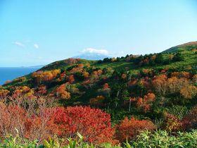 絶景と花の島を歩いて観光!秋もオススメ礼文島トレッキング