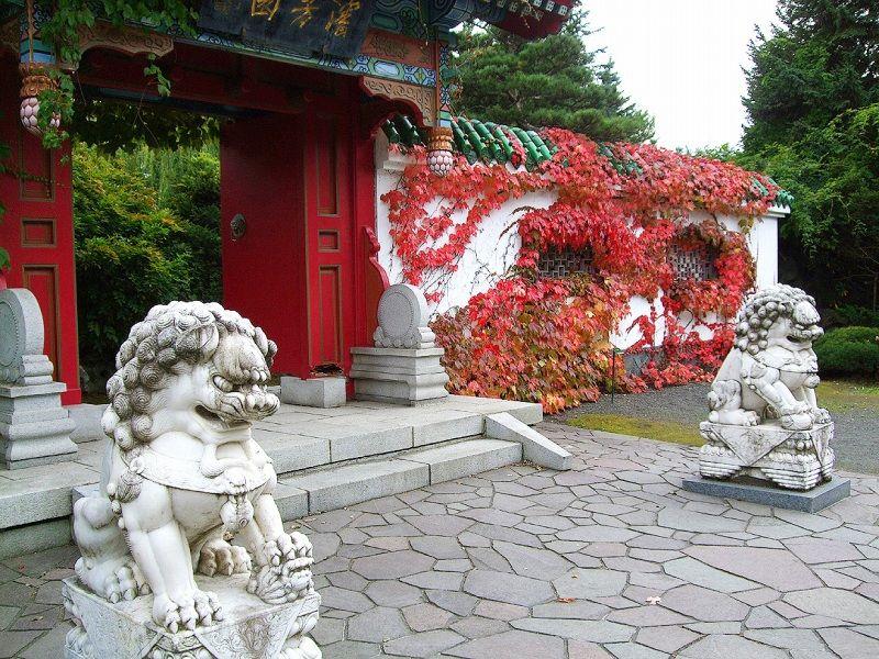 真っ赤に染まるツタ紅葉の門が美しい中国庭園「瀋芳園」