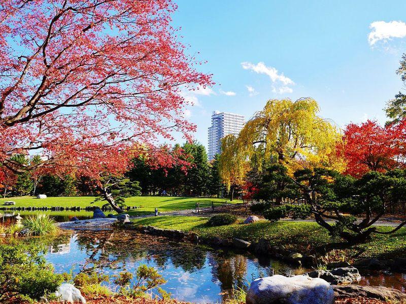 札幌都心に広がるオアシス!水辺と紅葉が美しい秋の中島公園