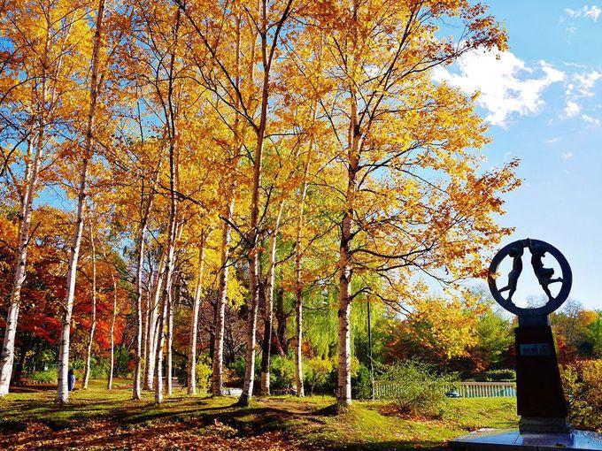 芸術の秋!中島公園でアート観賞を
