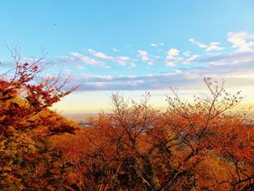 視界に広がる紅葉&関東平野の絶景!栃木県太平山「謙信平」