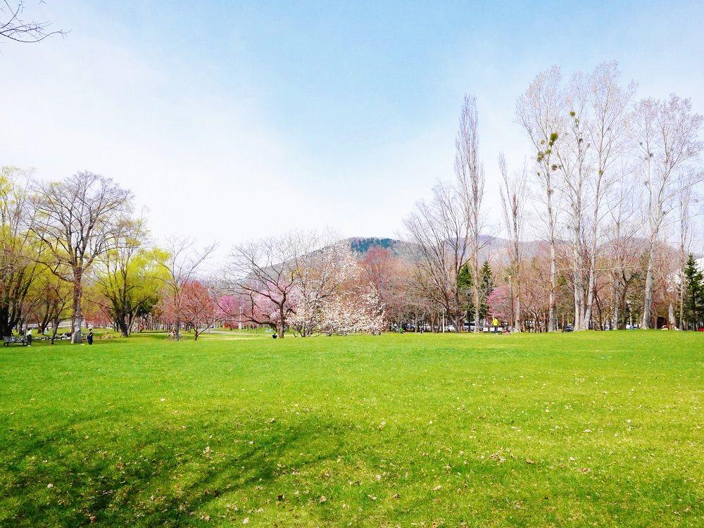 自然と札幌オリンピック冬季大会の北海道立真駒内公園