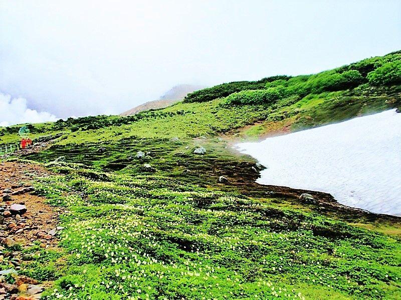 北海道最高峰「旭岳」は気軽に行けるパワースポット!