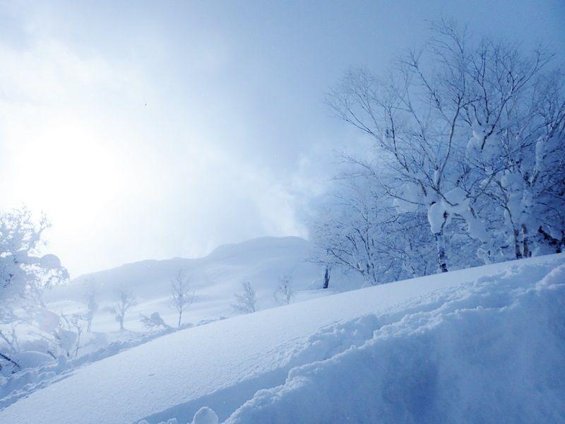 下山時は山スキーを楽しもう!