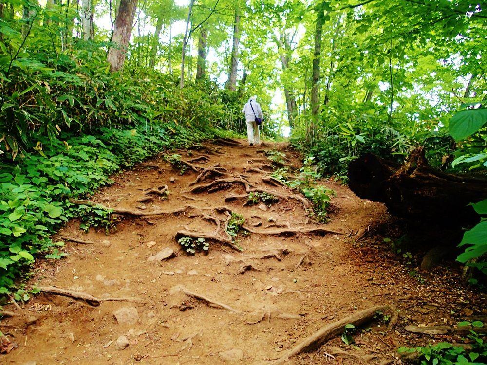 親子登山デビューは「慈啓会病院前コース」がおすすめ!