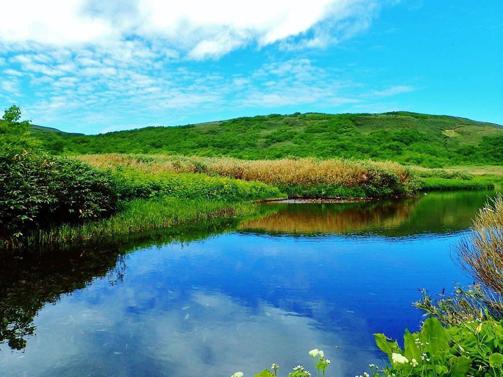 天空のオアシス「パンケメクンナイ湿原」