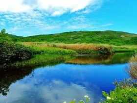 大自然に感動!目国内岳〜岩内岳縦走登山で夏のニセコ連峰を天空散歩