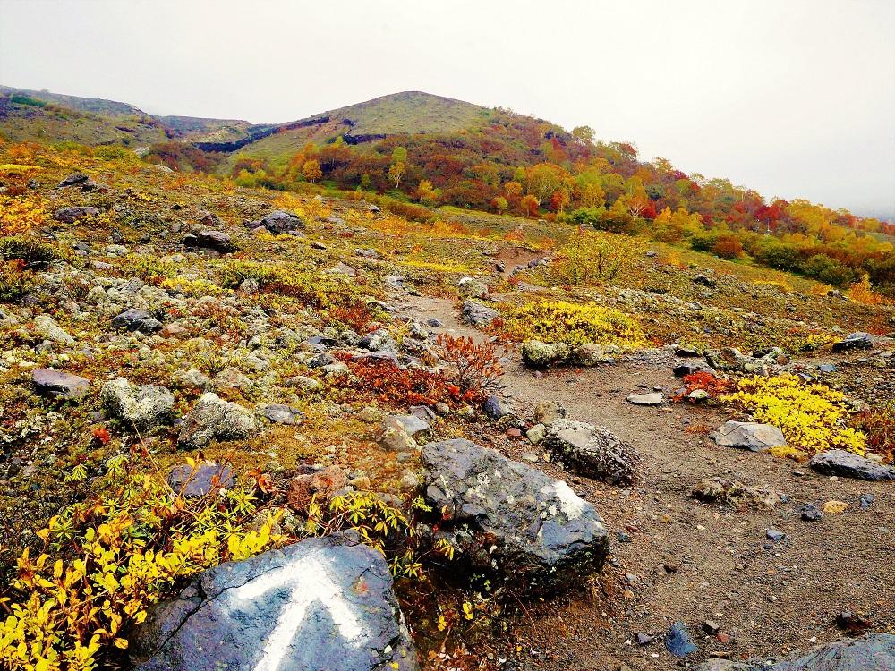 グリーンシーズンだけではなく秋もまた美しい樽前山