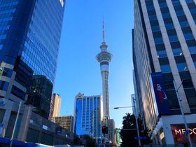 NZオークランドのシンボル「スカイ・タワー」を徹底ガイド!