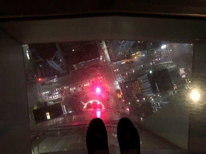 市内のどこからでも見える!スカイ・タワー