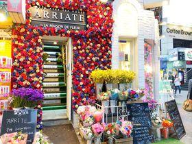 ソウル弘大で絶対行きたい!花に囲まれたフラワーカフェ「ARRIATE」