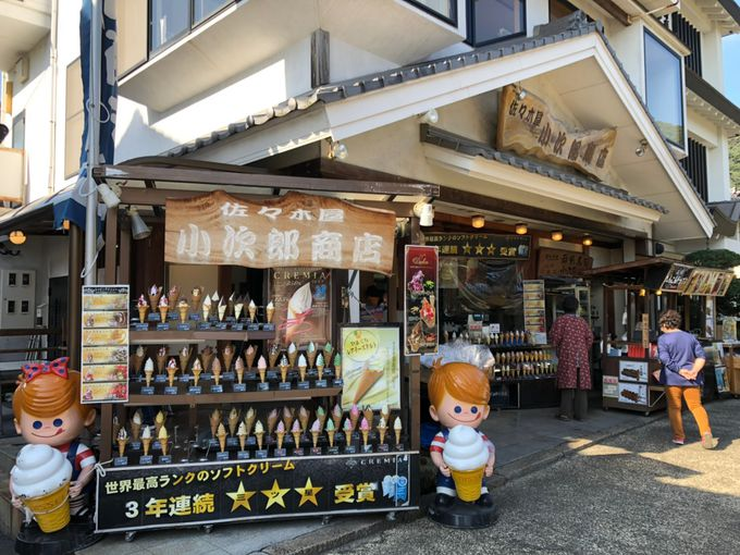 岩国城下町で競う「むさし」と「小次郎」とは!?
