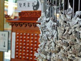 台湾のお宮が埼玉に!五千頭の龍が昇る「聖天宮」で運気アップ