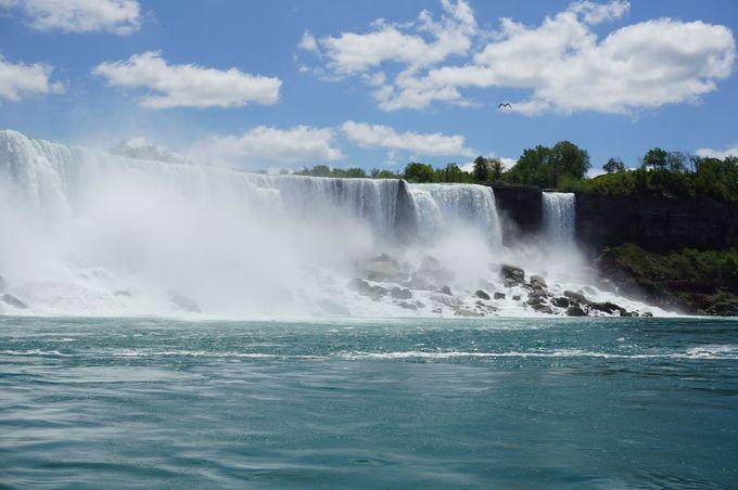 大迫力の水流とあおあおとした木々、自然豊かな「ナイアガラの滝」