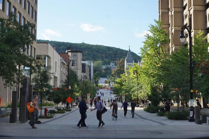 モントリオールの街並みを一望!「Mount Royal」