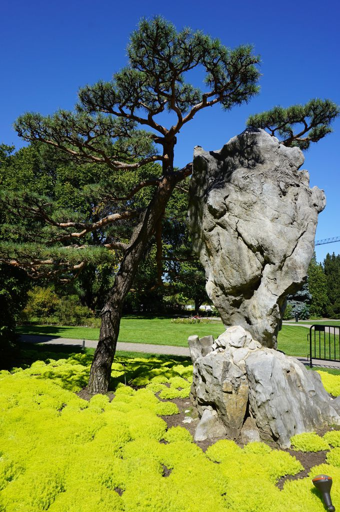 美しい花と植物に癒される「モントリオール植物園」