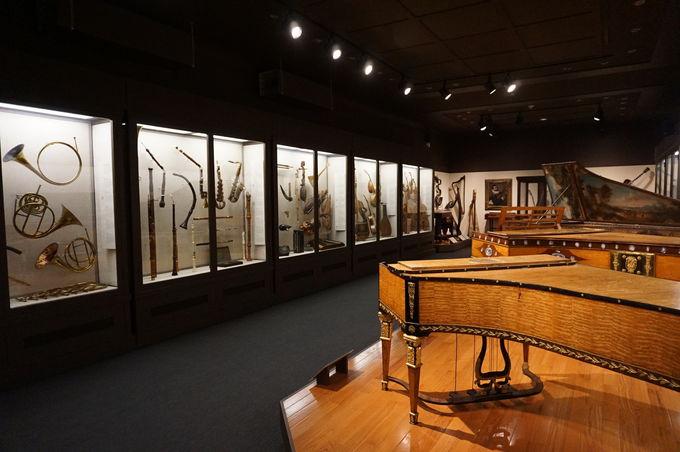 楽器や現代アートまで見どころ満載