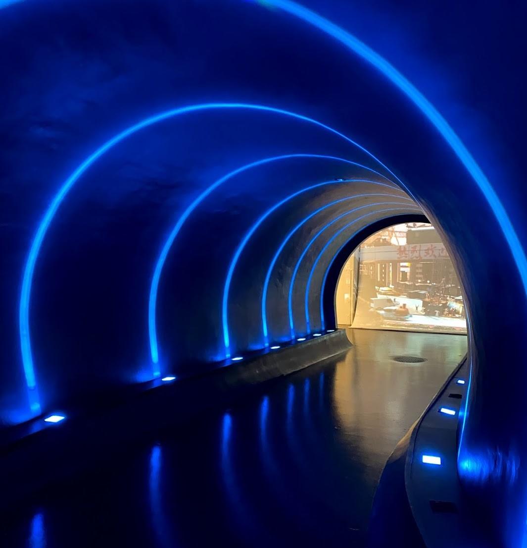 ガリバートンネルを通り抜けて大冒険に旅立とう!