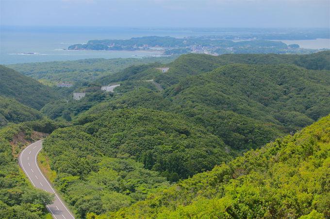 1日目午後:朝熊岳まで伊勢志摩スカイライン絶景ドライブ