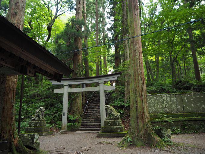 自然と信仰が結びついた形!静寂に佇む古刹「十和田神社」