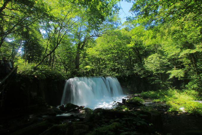 溢れる緑と渓流がもたらす極上の癒し!景勝地「奥入瀬渓流」