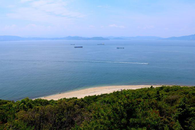 河津桜に彩られる秘境の岬と浜辺「釈迦ヶ鼻」