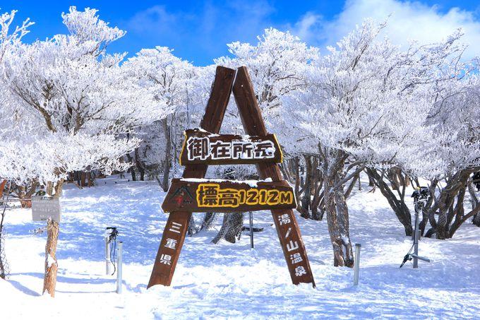 樹氷咲き誇る「朝陽台広場」周辺を雪山ハイキングしよう!