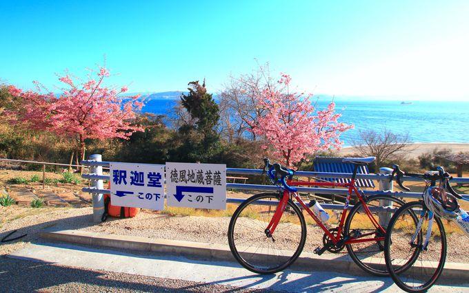 小豆島ならではの自然を堪能できる「三都半島」絶景ドライブ!