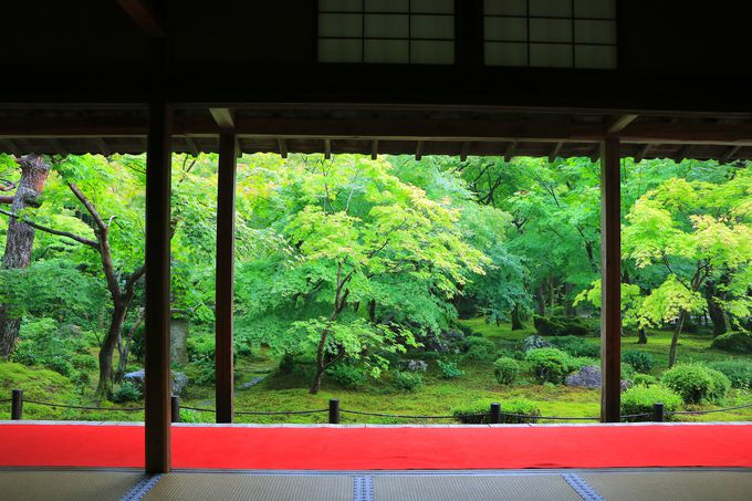 静寂と美しさに包まれる!一乗寺の史跡で過ごす穏やかな時間