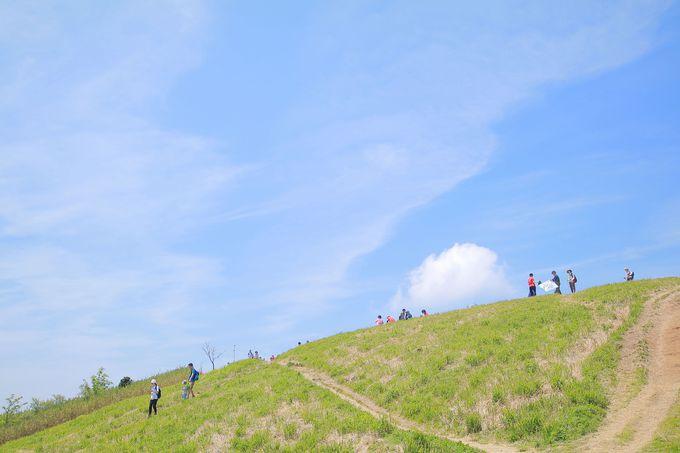 関西人に愛される「金剛山地」は関西ハイカーの登竜門!