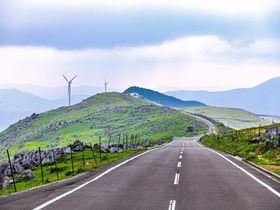 まるで日本のスイス?山上に広がる牧歌世界・高知県「四国カルスト」