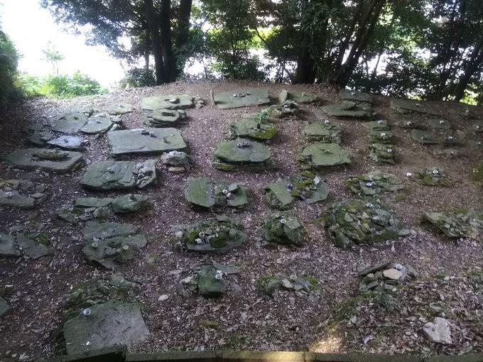 地図と墓から判明した史実!飛び地に整然と営まれた「垣内墓地」