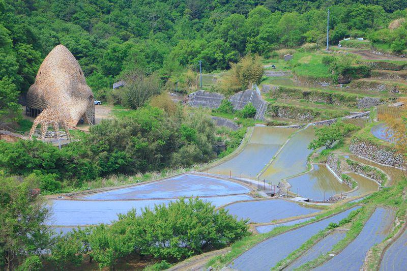 里山の原風景!中山千枚田とアートで「小豆島に恋」する旅を   香川県   LINEトラベルjp 旅行ガイド