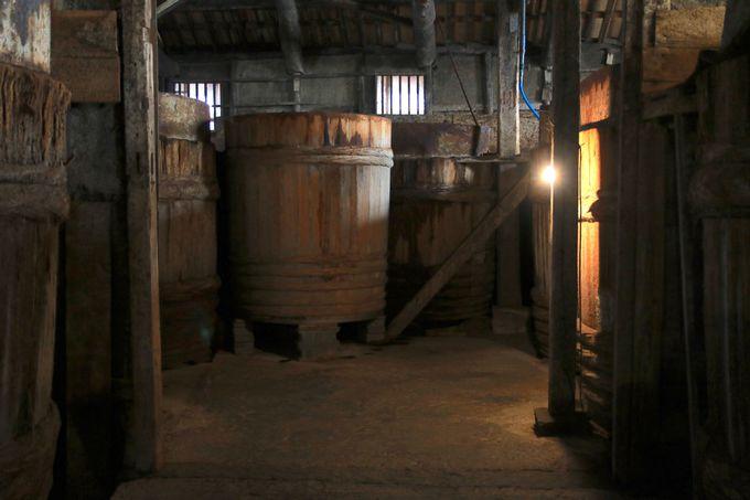 1日目午前:ジャンボフェリーの船旅からオリーブリーゼントと醤油蔵見学
