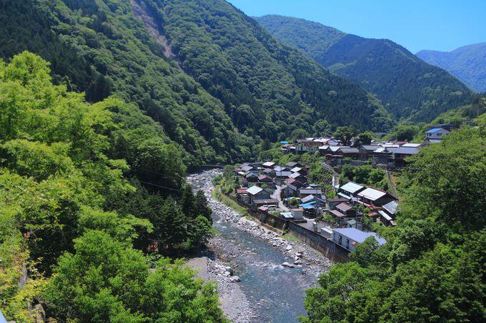 町に近いけれど広がる大自然!揖斐川で楽しむ日本の夏