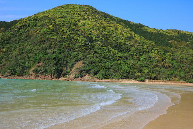 高浜と一緒に!「日本一美しいビーチ」を作り上げる頓泊海水浴場
